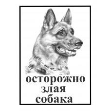 Табличка Ч/Б с надписью Осторожно злая собака